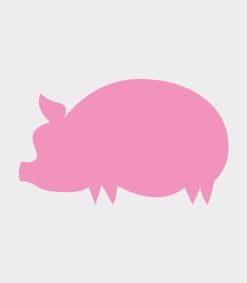 Schwein & Wildschwein